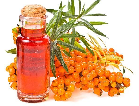 Облепиховое масло, лечение облепиховым маслом - Язвенная болезнь желудка и двенадцатиперстной кишки Чем выше, тем ужасней